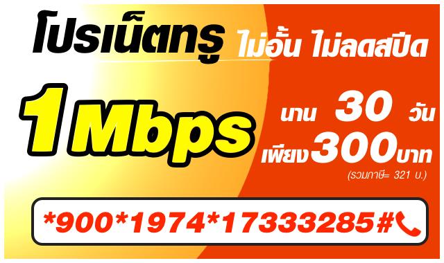 โปรเน็ตทรูรายเดือน 1mbps 300b-17333285