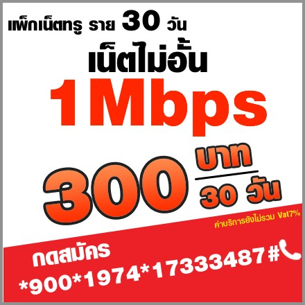 โปรเน็ตทรูรายเดือน 1mbps:300